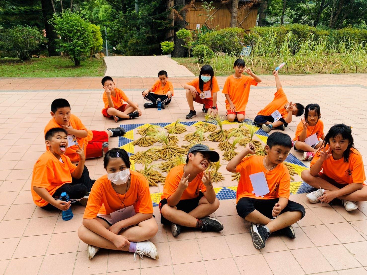 小米文化課程—豐收時刻
