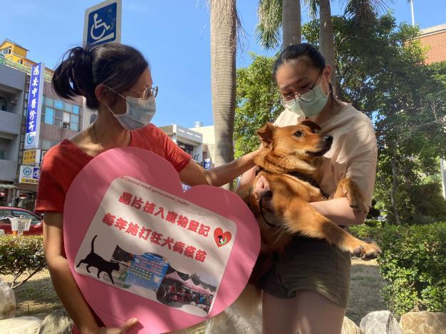 遊蕩犬管理精進新聞稿照片
