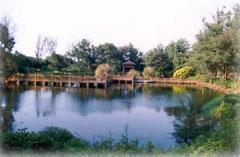 濱海遊憩區