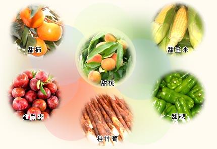 草莓桃李柑橘、甜柿、高接梨…等