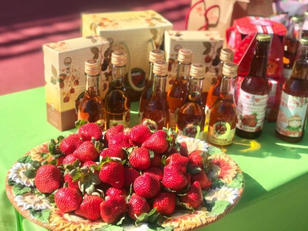 草莓文化季開園記者會8