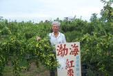 渤海紅棗休閒農場