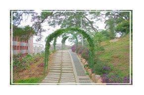 銅鑼公園景觀
