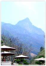 泰安鄉位於雪山山脈的西坡